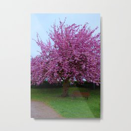 colourful flowerage Metal Print