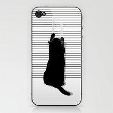 Cat Scratch iPhone & iPod Skin