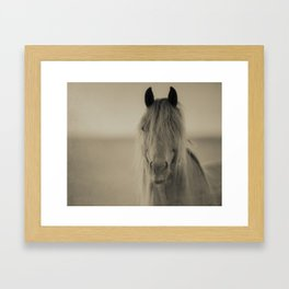 HORSE 2 - Old Friends Collection Framed Art Print