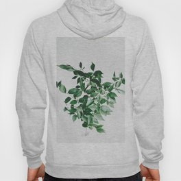 Minimal Green Plant Arrangement Hoody