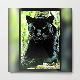 Big Cat Models: Green Eyed Black Panther Metal Print