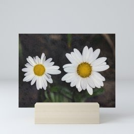 Old And Young Daisies Texture Mini Art Print