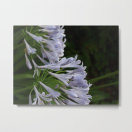 Flowers at Asuka Shrine Metal Print