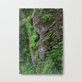 Cape Flattery Raven Head Boulder Bird Moss Ferns Rock Geology Washington Cliff Hiking Forest Metal Print