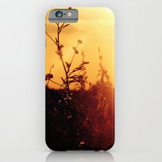 Illume Slim Case iPhone 6s