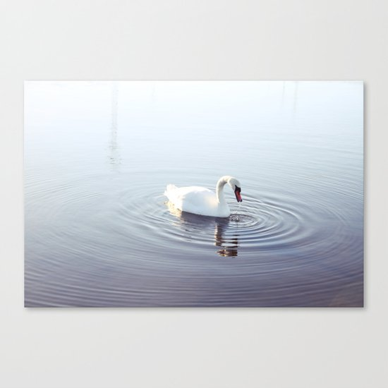 the beautiful swan Canvas Print