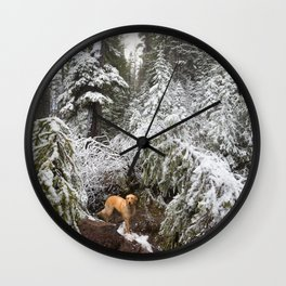 Dog in Snowy Forest Wall Clock