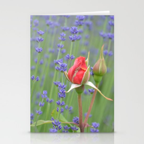 Roses and Lavender Stationery Cards