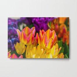 Tulips Enchanting 09 Metal Print