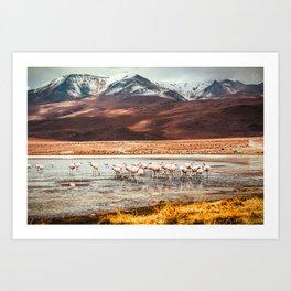 Flamingo Lake, Bolivia #society6 #buyart #homedecor Art Print