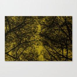 TREE 1.1 Canvas Print