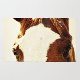 Quarter Horse Portrait Rug