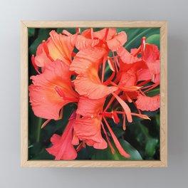 Firecracker Red Jungle Tropical Flower Framed Mini Art Print