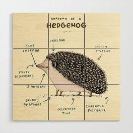 Anatomy of a Hedgehog Wood Wall Art