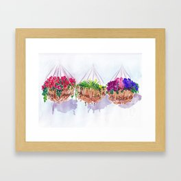 Brightly coloured flowers hanging in my baskets | By Sarah Cannon Framed Art Print