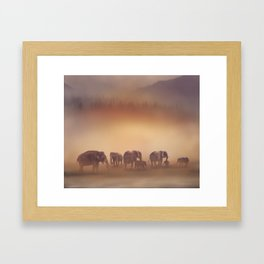 Group of elephants at sunset Framed Art Print