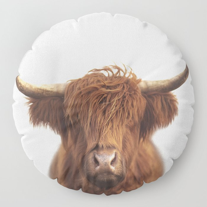 Highland Cow - Colorful Floor Pillow