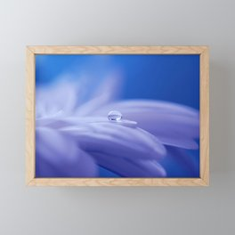 Blue Flower Blossom Nature Macro Photography Framed Mini Art Print