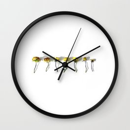 Persistence of Pretty II Wall Clock