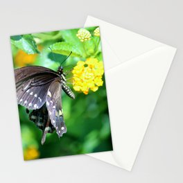 Butterfly Side View Stationery Cards