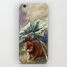 Funny Rabbits - In The Rain 551 iPhone & iPod Skin