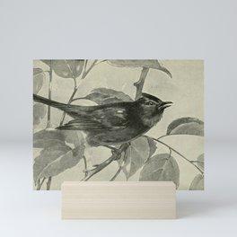 Vintage Print - Catbird Mini Art Print