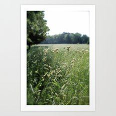 Come, Take a Walk with Me Art Print