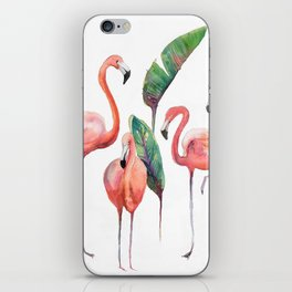 Pink Flamingos with some Strelizia Foliage iPhone Skin