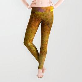 Abstract No. 260 Leggings