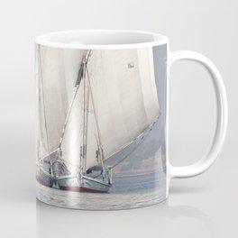 Gliding on the Nile Coffee Mug