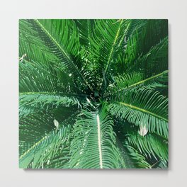 Palm Leaves Blowing Pell Mell In the Breeze Metal Print