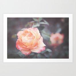 Peachy Rosie Art Print