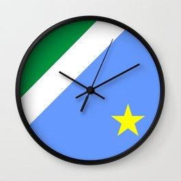 Mato Grosso do Sul flag Brazil Wall Clock