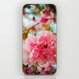 Pink Blooms (1) iPhone Skin