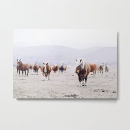 The wild horses in the winter landscape with white snow vintage illustration Metal Print
