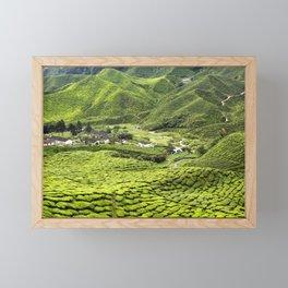 Cameron Highlands Tea Plantation Malaysia Framed Mini Art Print