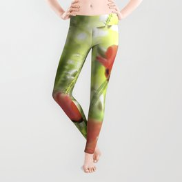 Poppies in the bright sunshine Leggings