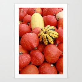 gourds 4 Art Print