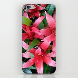 Red guzmania tropical flower iPhone Skin