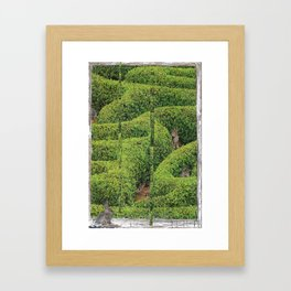 Garden Labrynth Framed Art Print