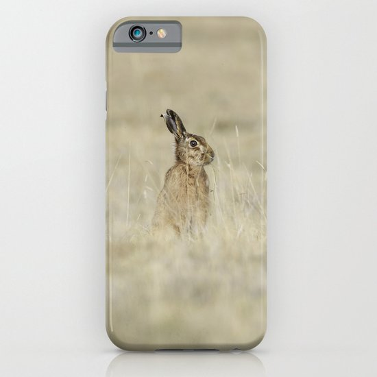 Brown hare iPhone & iPod Case