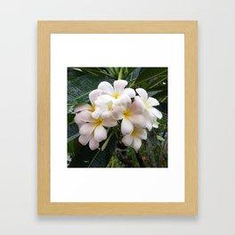 WHITE CLUSTER Framed Art Print