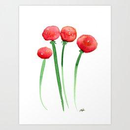 4 Ranunculus Art Print