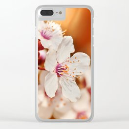 Spring 240 Clear iPhone Case
