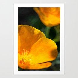 Orange Abstract III Art Print