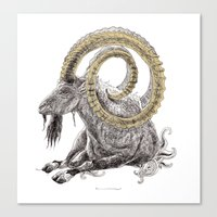 capricorn Canvas Prints featuring Capricorn by Dennis Wilder