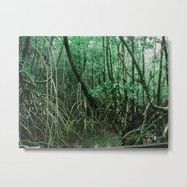 Mangroves in Green Metal Print