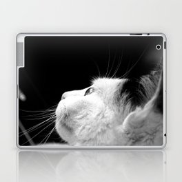 Black & White Cat Laptop & iPad Skin
