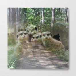 Magic Animals MEERKATS Metal Print