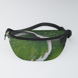 Shine and Shadows Fanny Pack